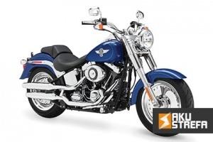 Jaki-akumulator-do-Harley-Davidson-FLST-Softail-min